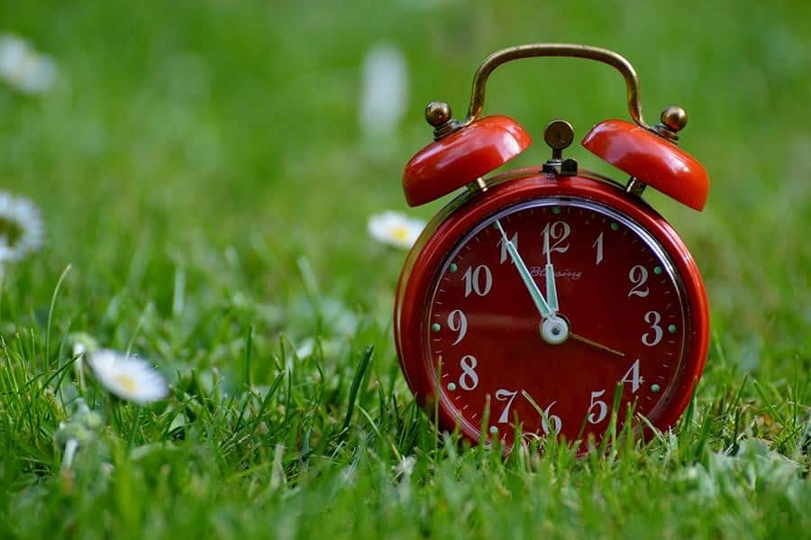 best time to post social media tips